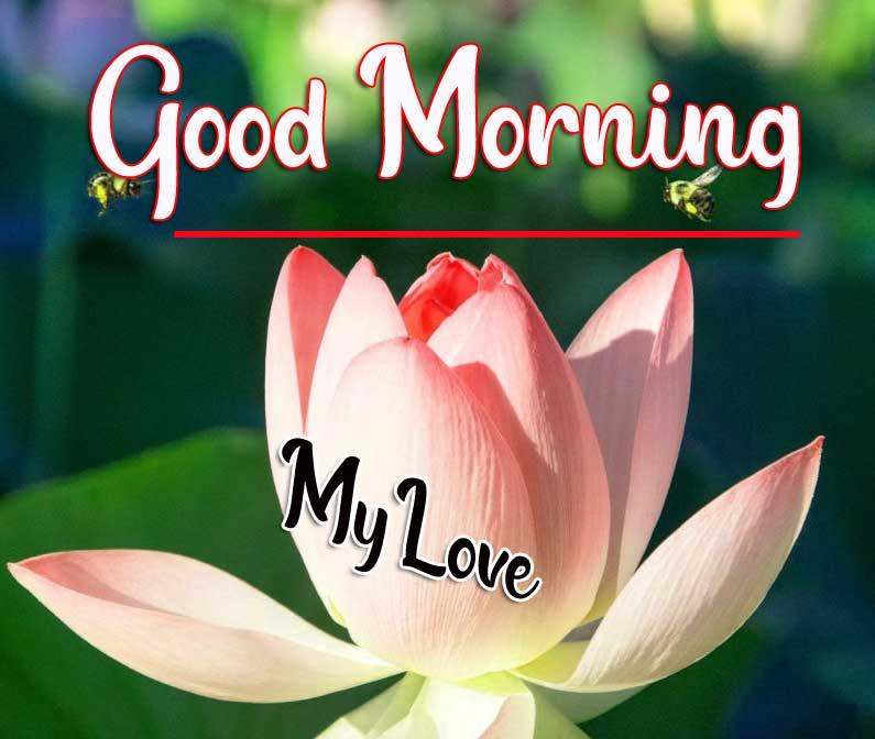 Beautiful Good Morning Wallpaper 55 2
