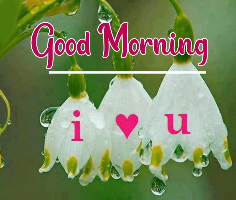 Beautiful Good Morning Wallpaper 59 2
