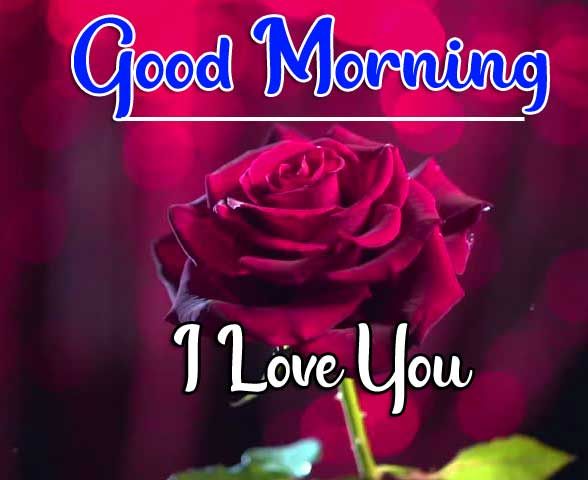 Beautiful Good Morning Wallpaper 6
