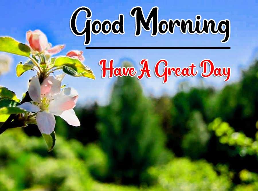 Beautiful Good Morning Wallpaper 66 1