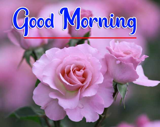 Beautiful Good Morning Wallpaper 66