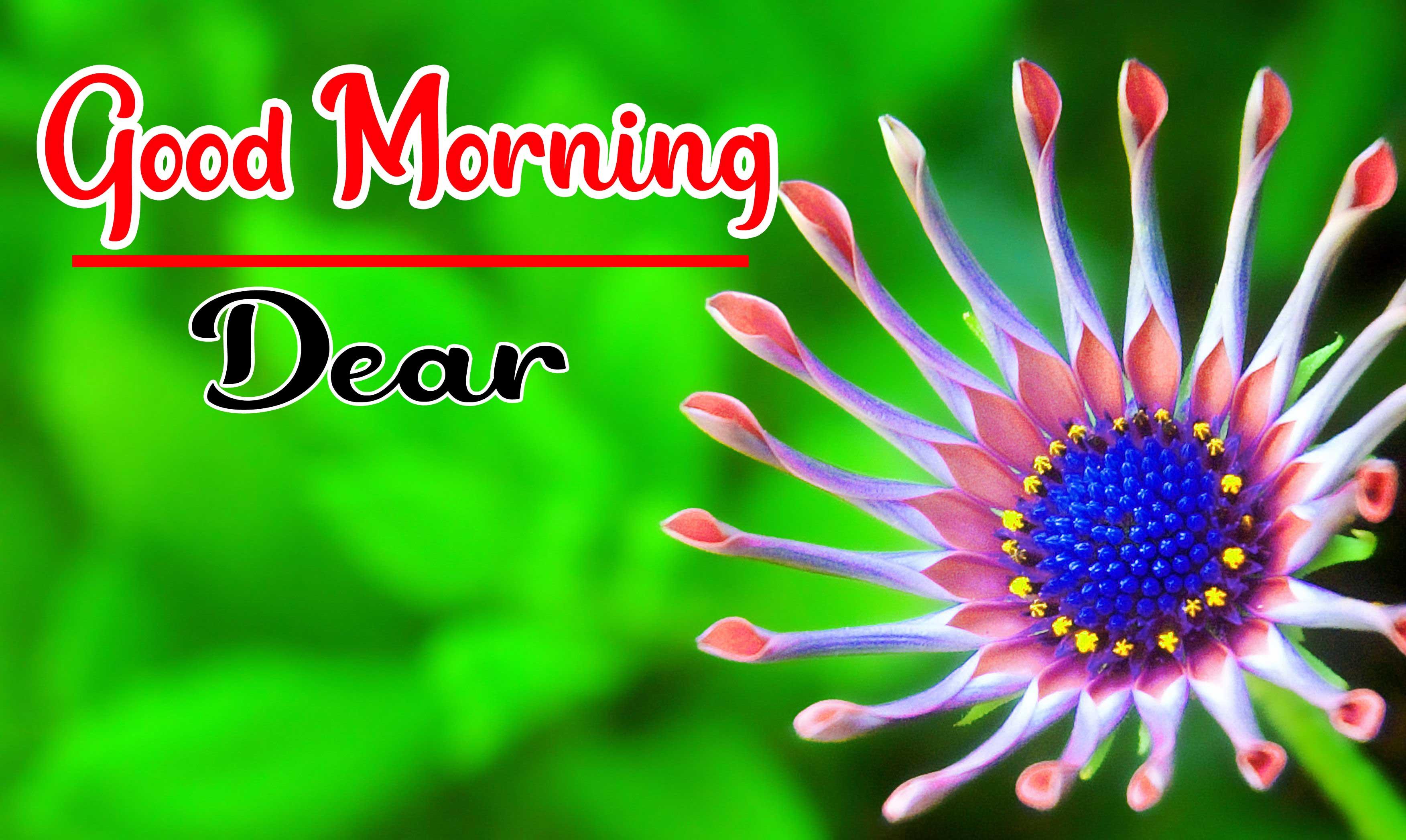 Beautiful Good Morning Wallpaper 70