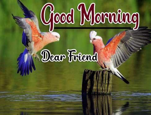 Beautiful Good Morning Wallpaper 74 1