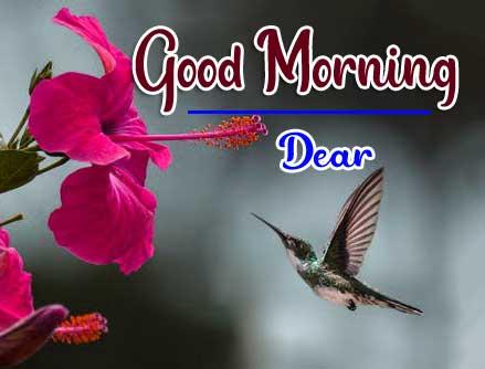 Beautiful Good Morning Wallpaper 75 1