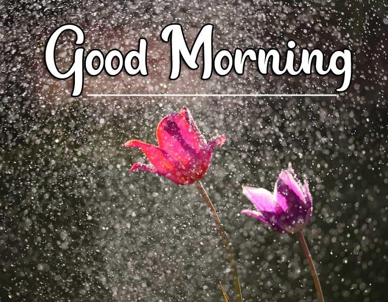 Beautiful Good Morning Wallpaper 77 1