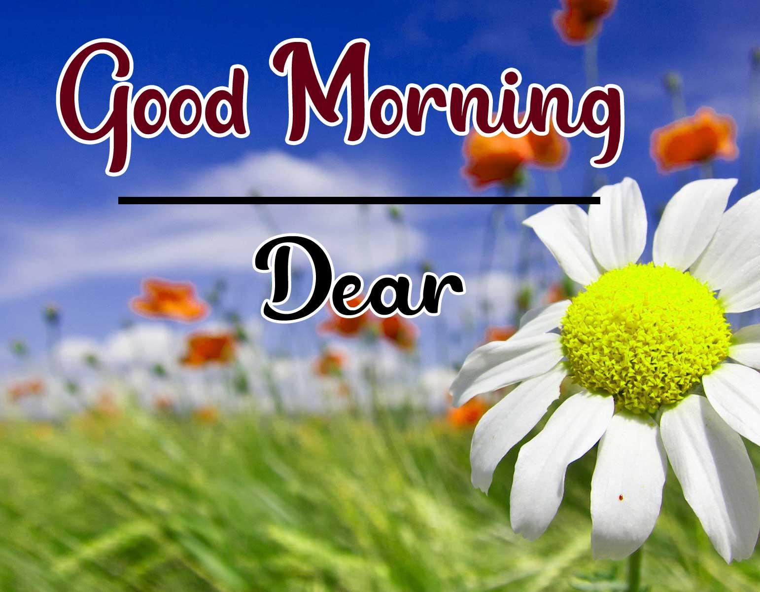 Beautiful Good Morning Wallpaper 79 1