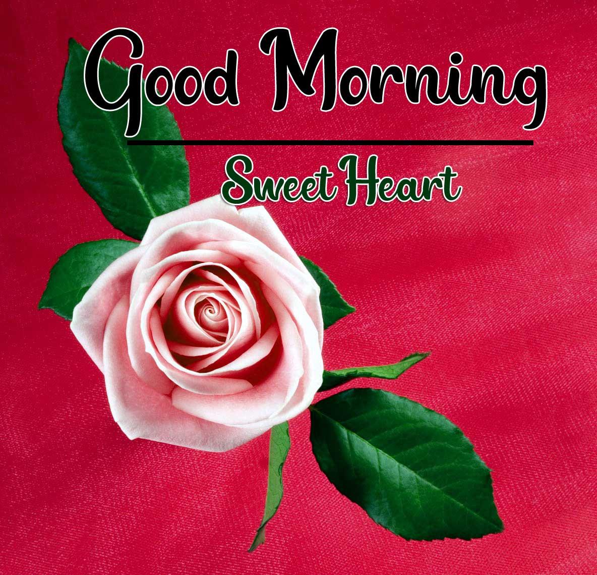 Beautiful Good Morning Wallpaper 81 1