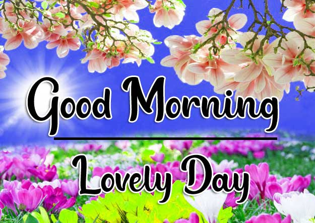 Beautiful Good Morning Wallpaper 87