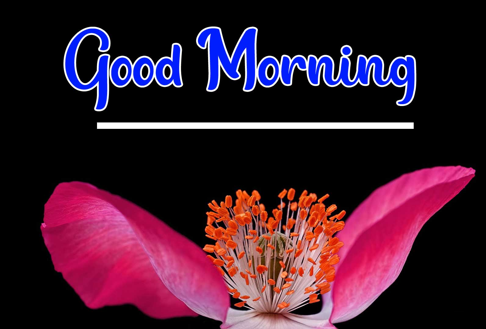 Beautiful Good Morning Wallpaper 91
