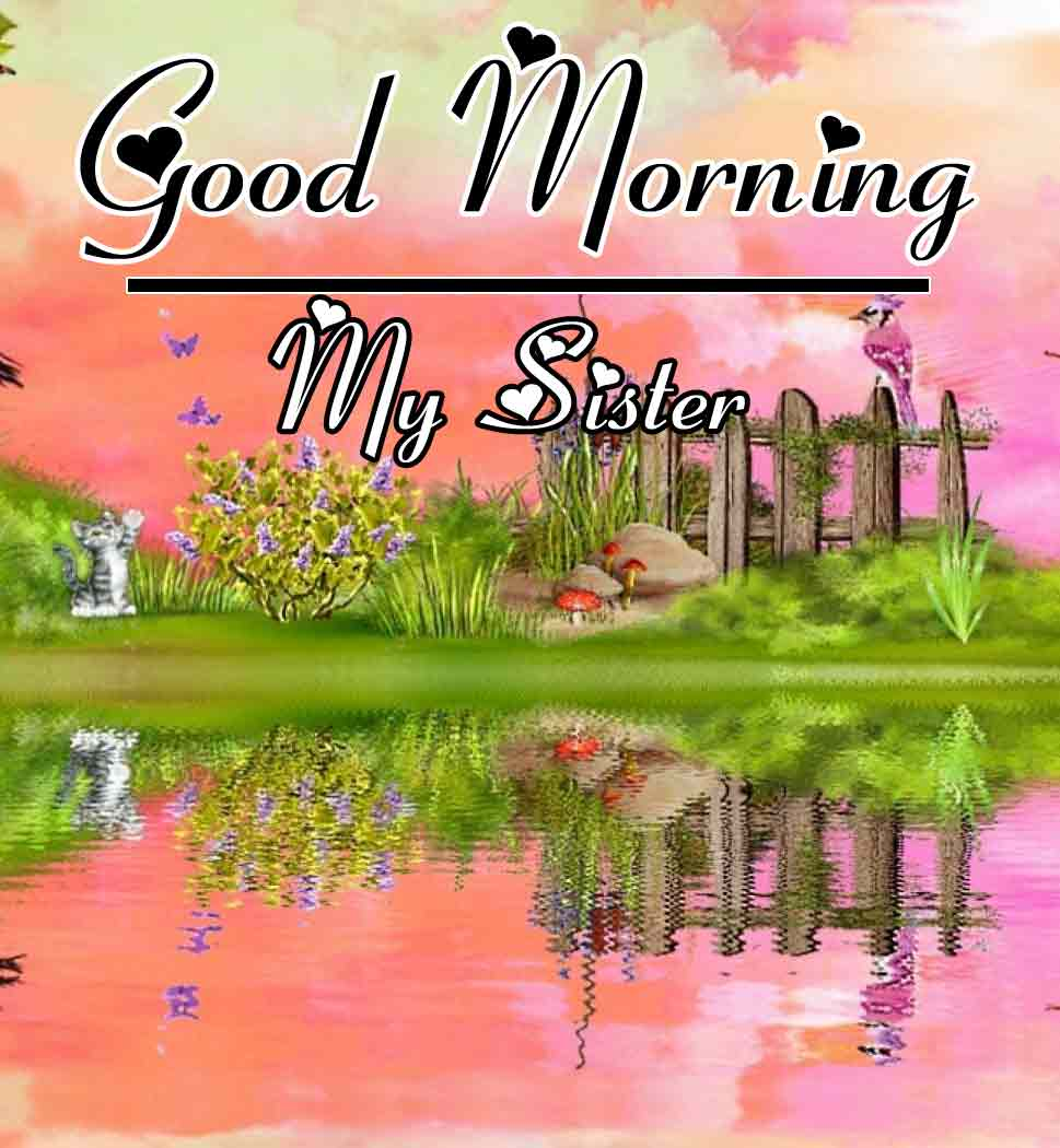 Best Good Morning Images 12
