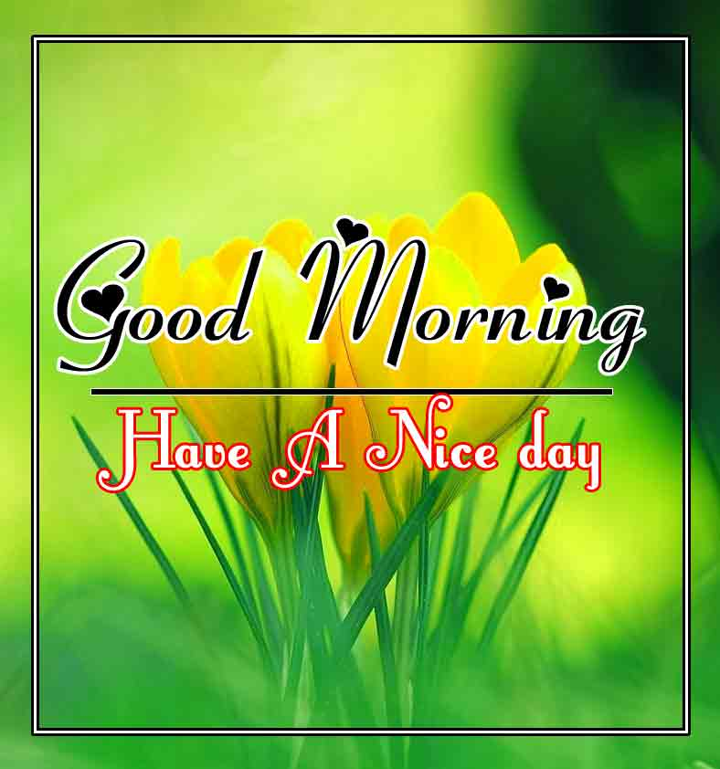 Best Good Morning Images 19