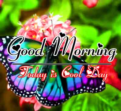 Best Good Morning Images 7