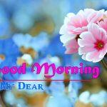 Flower Good morning HD Images 1