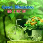 Flower Good morning HD Images 2
