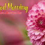 Flower Good morning HD Images 5