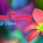 Flower Good morning HD Images 6