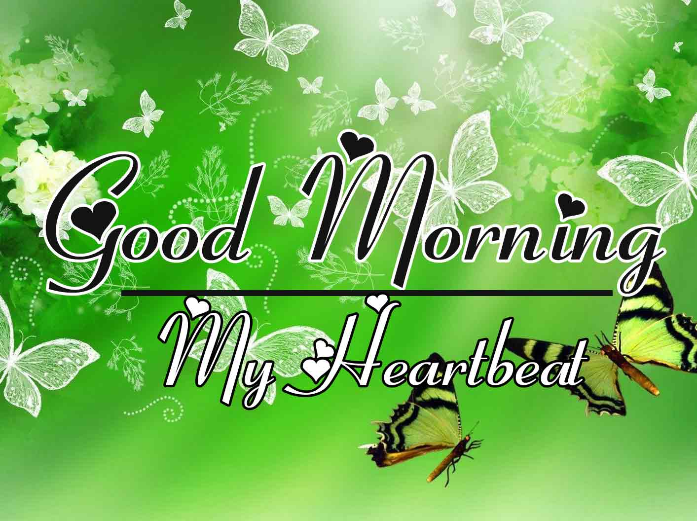 Free New morning Images HD 34