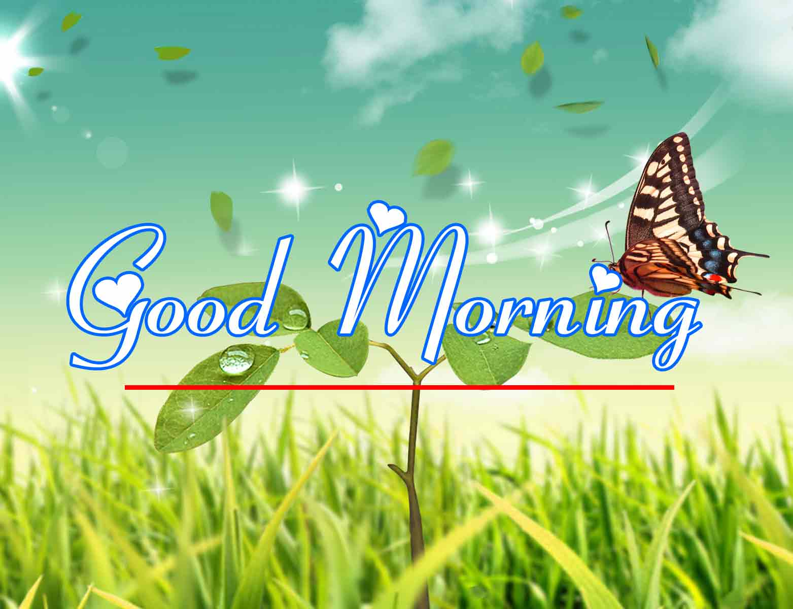 Free New morning Images HD 36