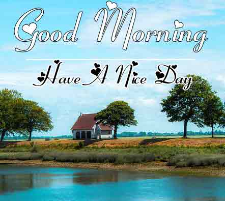 Free New morning Images HD 53
