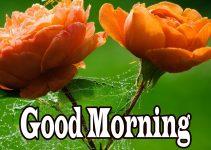 Happy Morning Images Wallpaper Pics HD