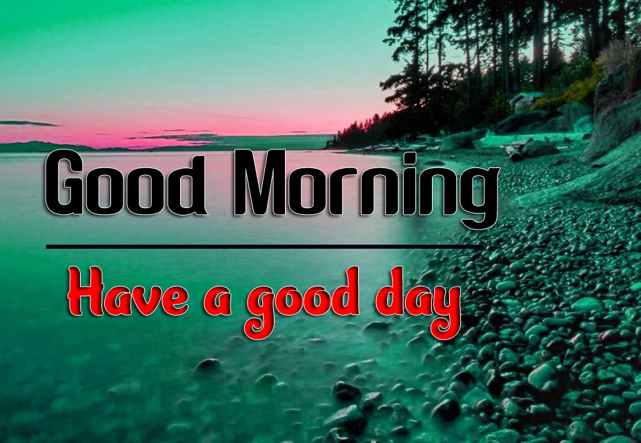 Good Morning 4k HD Images HD Pics Wallpaper Free Download