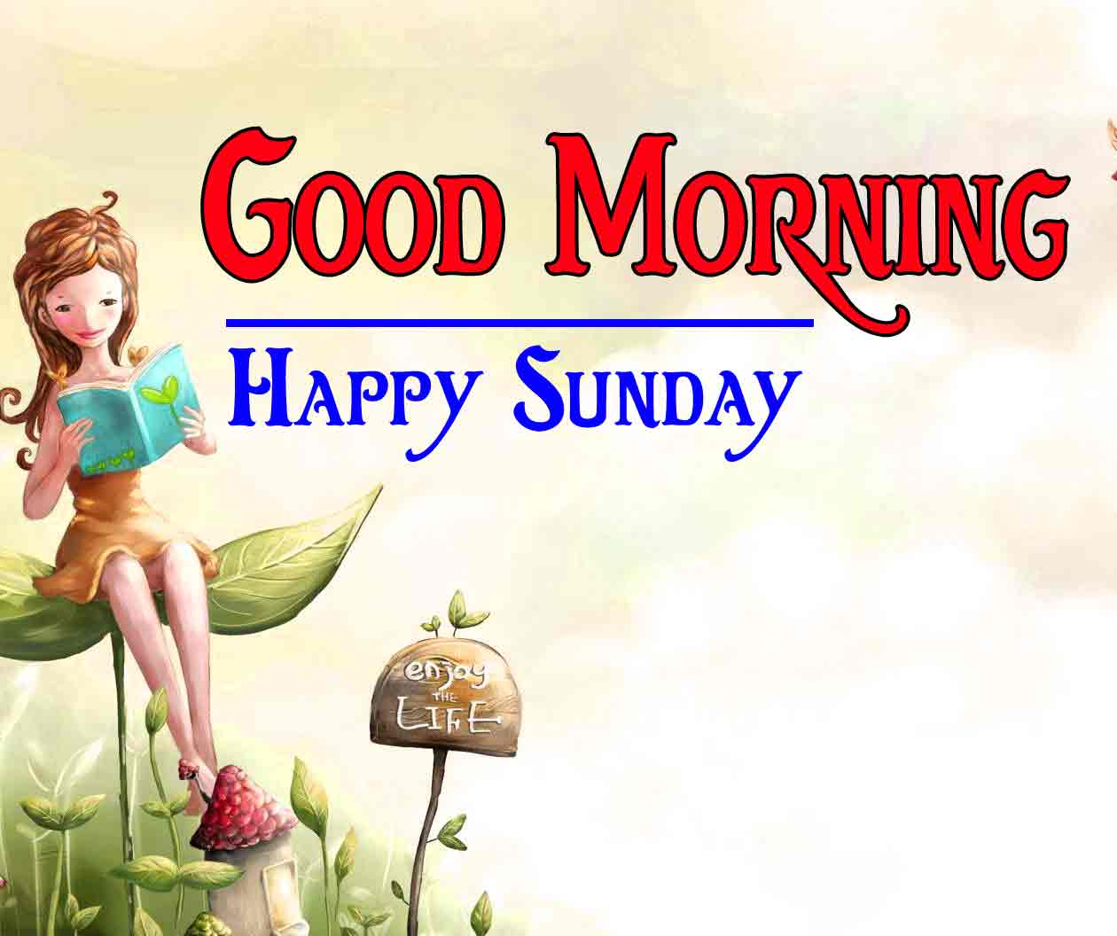 Good Morning 4k HD Images HD Photo Wallpaper Free Download