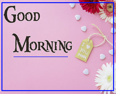 Good Morning Darling Images 100