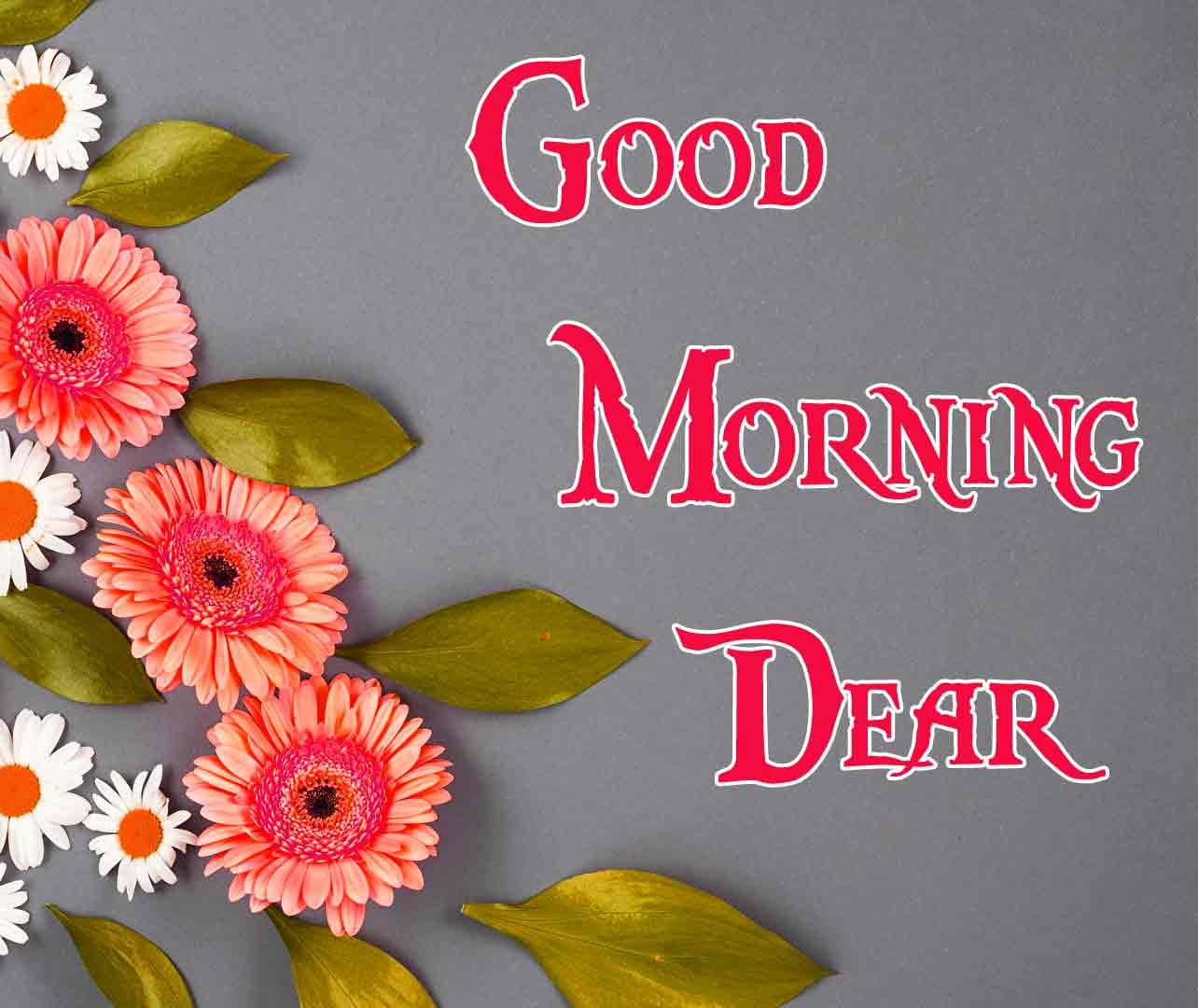 Good Morning Darling Images 42