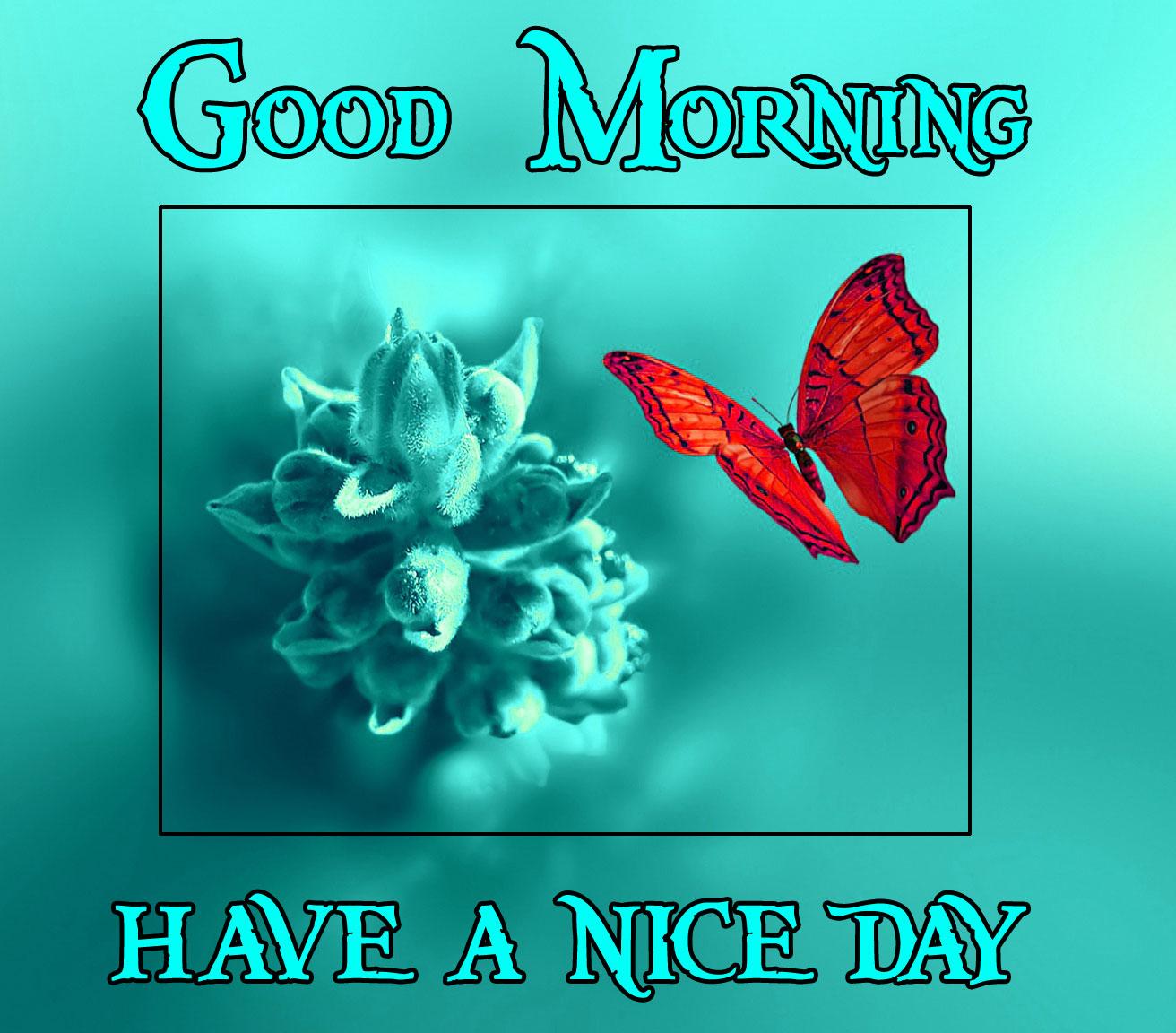 Good Morning Handsome Images 109