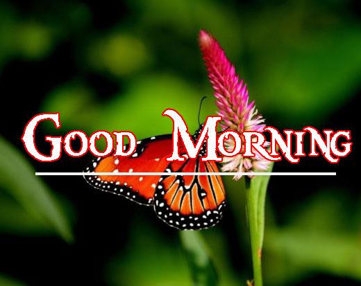 Good Morning Handsome Images 48