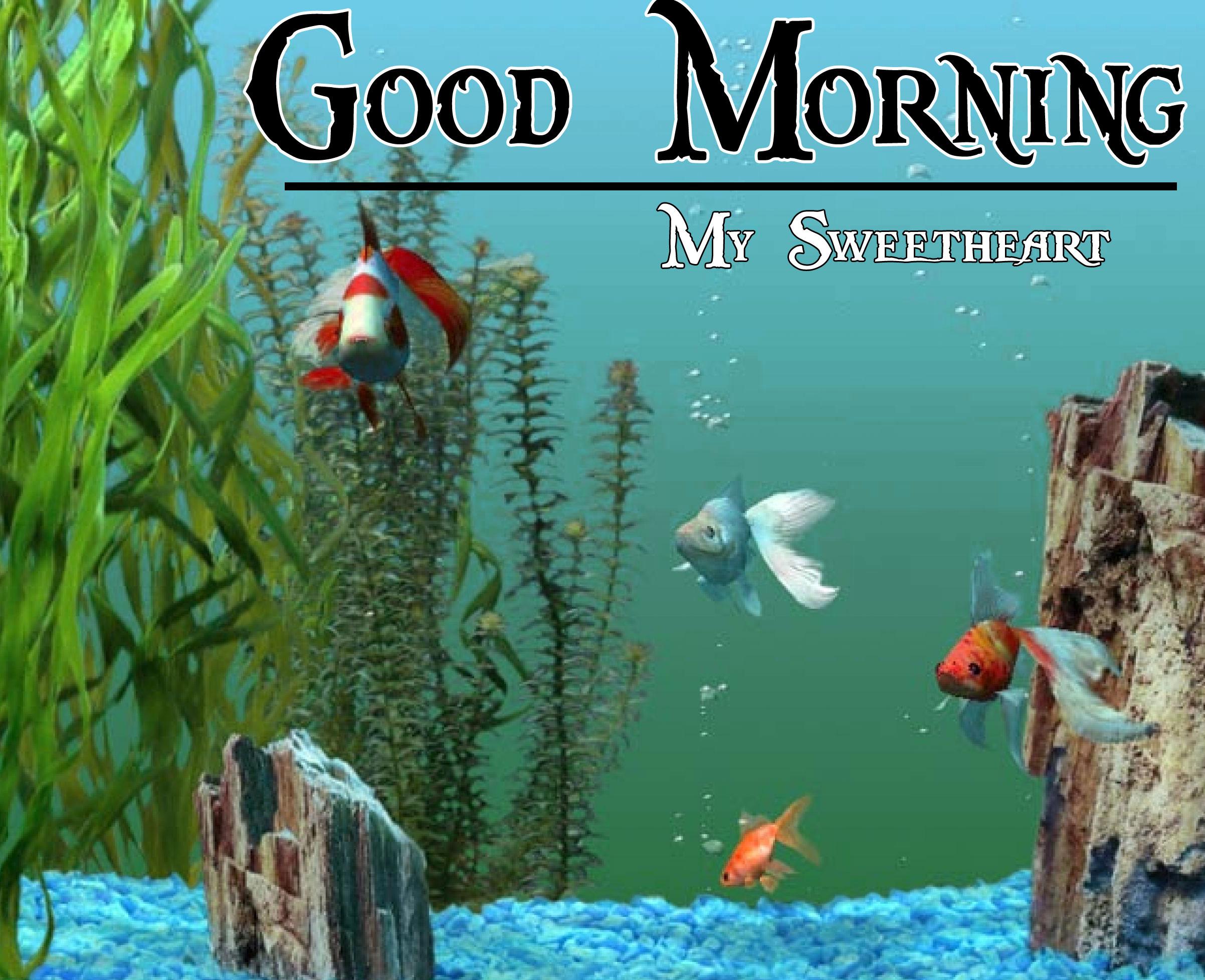 Good Morning Handsome Images 55