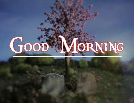 Good Morning Handsome Images 60