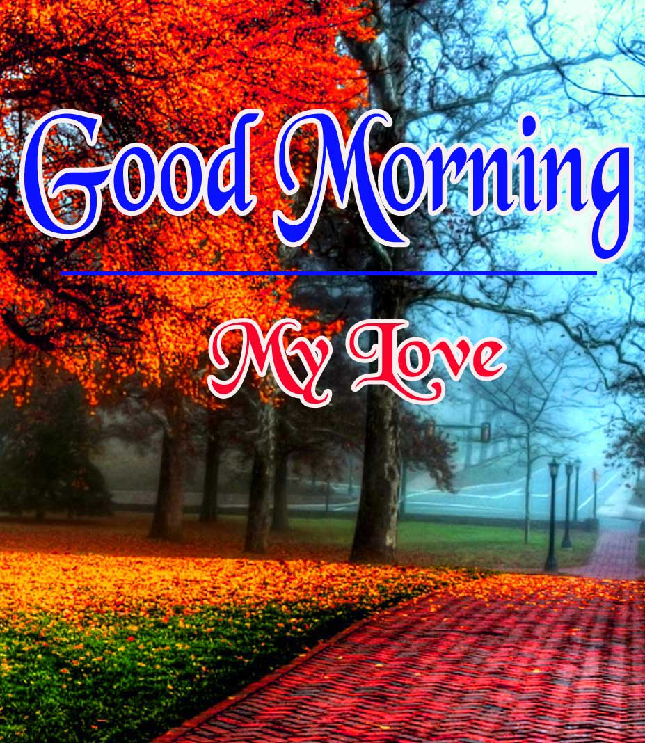 Good Morning Pictures Pics Free Download