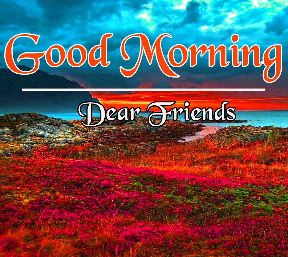 Beautiful HD Good Morning Pics Free Download
