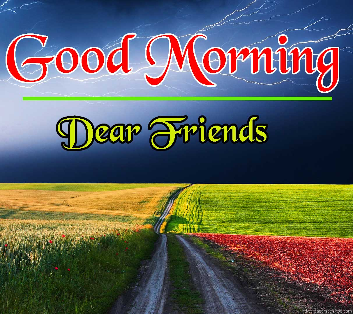 Beautiful HD Good Morning Wallpaper Free Download