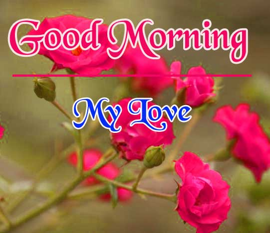 Good Morning Pictures Pics New Download