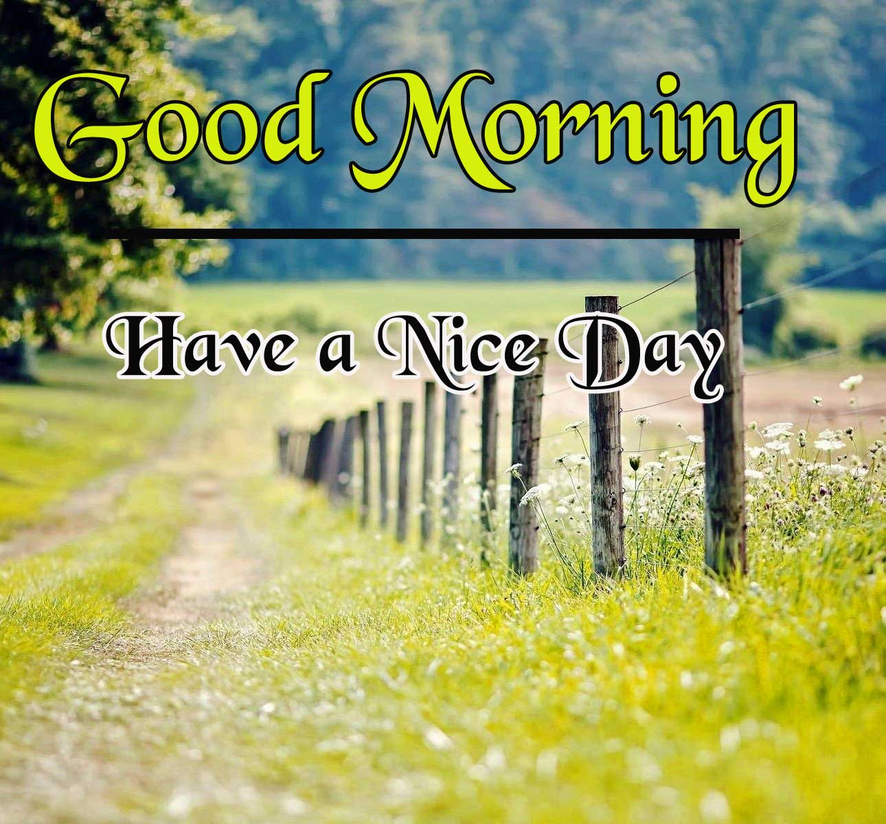 Good Morning Pictures Wallpaper Free