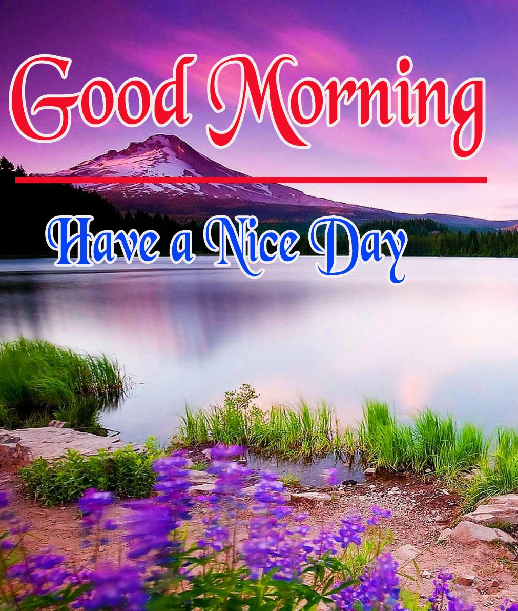 Best 2021 Good Morning Pictures Pic Download