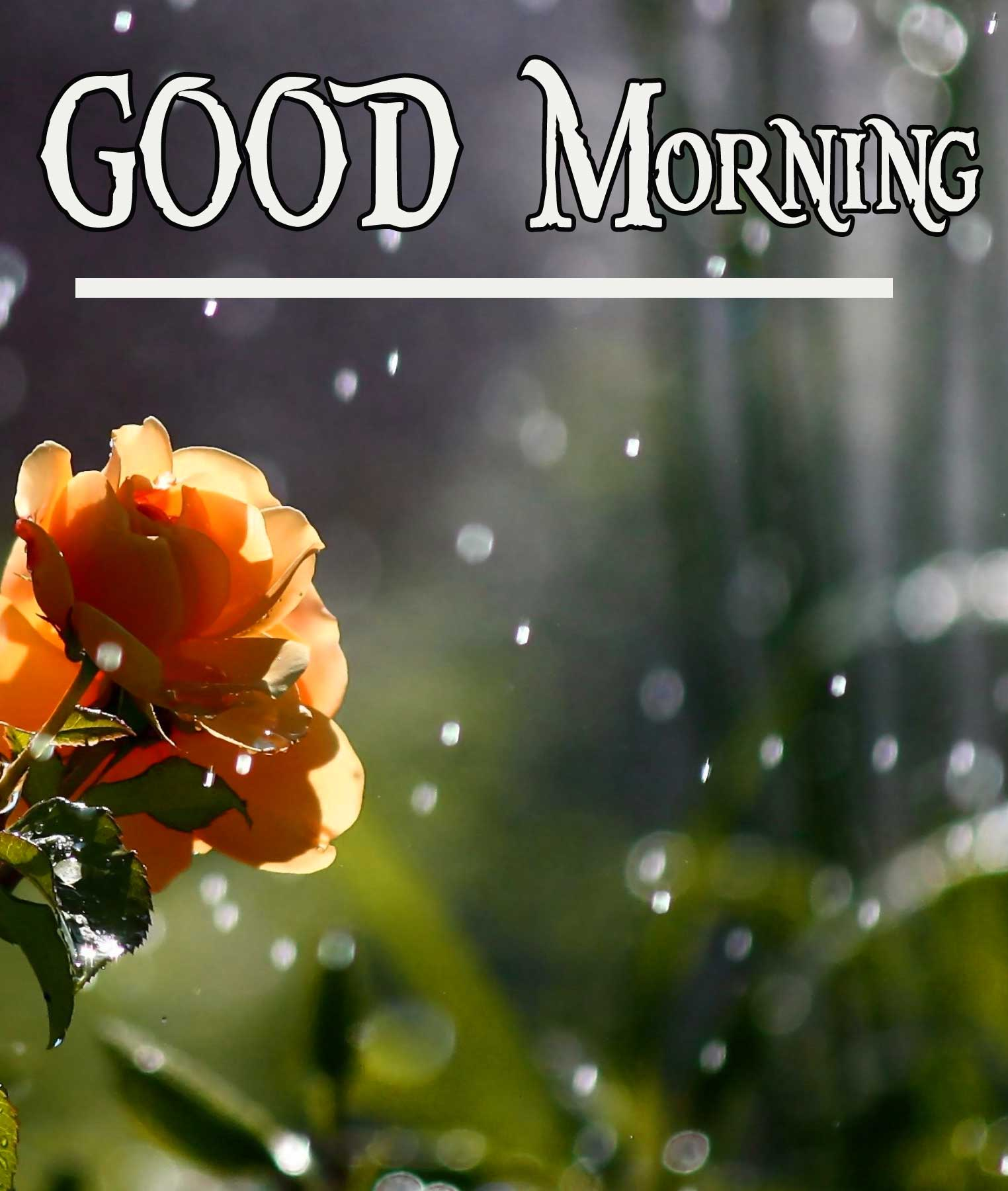 Best Quality Beautiful HD Good Morning pics Download