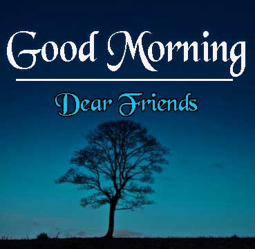 Dear Friend Beautiful HD Good Morning Pics Download