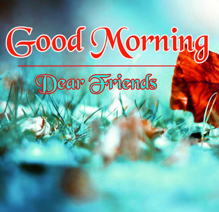 Beautiful HD Good Morning Wallpaper Download Free