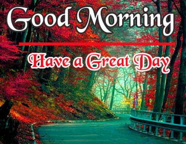 Beautiful HD Good Morning Pics New Download