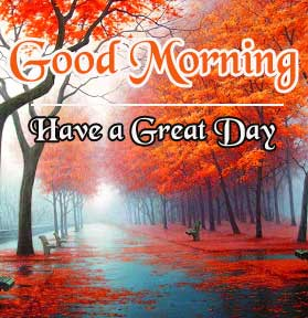 Beautiful HD Good Morning Pics New Download Free