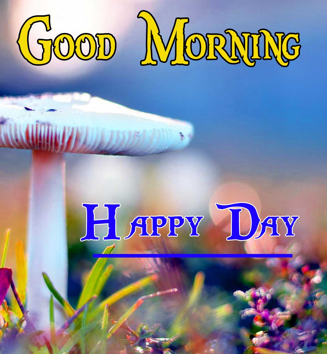 Good Morning Wallpaper 25