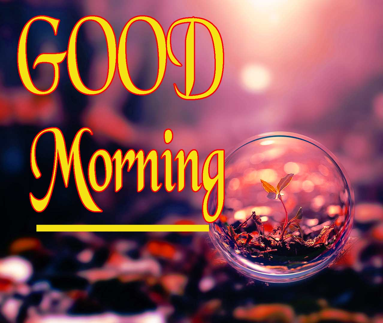 Good Morning Wallpaper 41