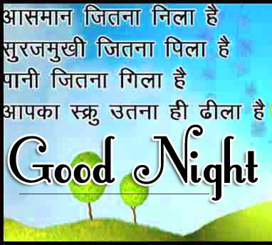 Good Night Images With Hindi Shayari 38