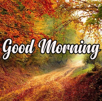 Happy Morning 10
