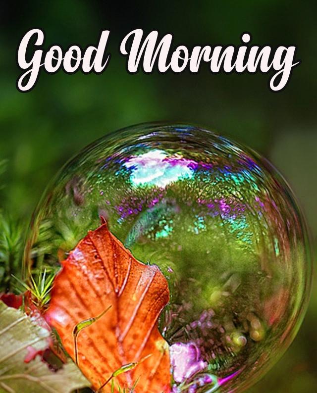 Happy Morning 11