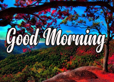 Happy Morning 18