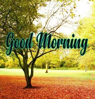 Happy Morning 23